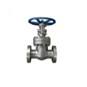 Cast Steel Valves - Global Valve & Controls - GVC