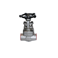 Forged Steel Valves - Global Valve & Controls - GVC